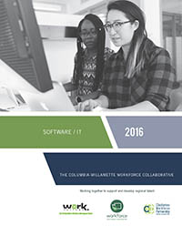 Software IT Sector Report 2016 Report cover