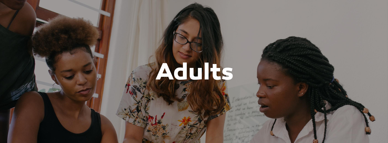 adults-overlay-01